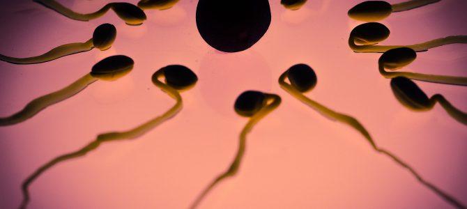 Alergie na spermie